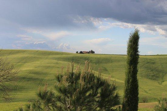 Agriturismo Il Rigo : Вид из окна