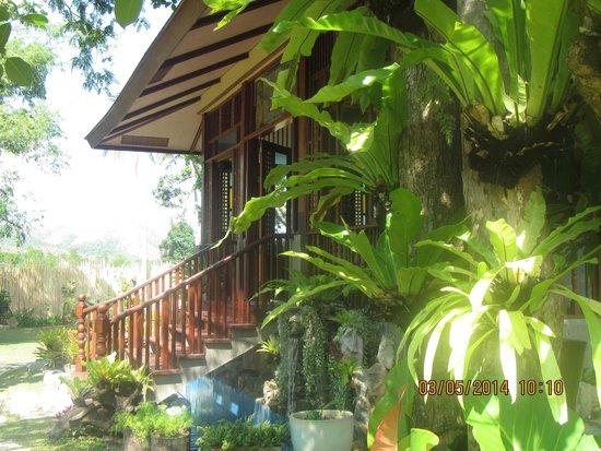 Sophia's Garden Resort: tropical plants everywhere