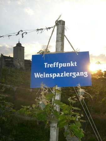 Weinspaziergang Tours