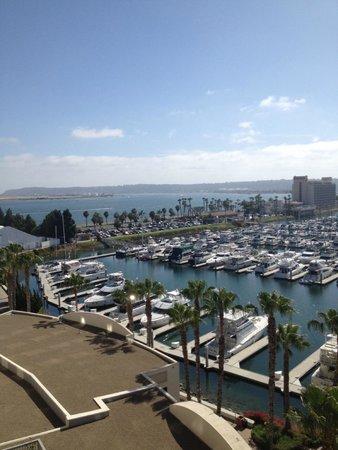 The Sheraton San Diego Hotel & Marina : View of Marina from my room - 9th floor
