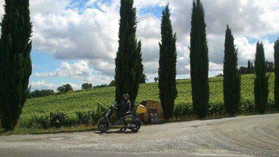 Umbria in Vespa: Toscana..paesaggio