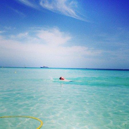 West Bay Beach: Disfrutando del mar