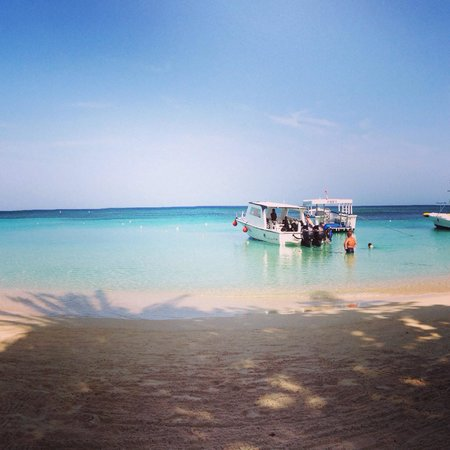 West Bay Beach: Divers