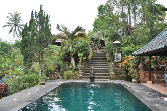 Tanah Merah Art Resort: hotel grounds