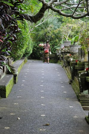 Tanah Merah Art Resort: walkways
