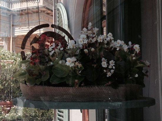 Hotel Ercolini & Savi : Отель встречает цветами