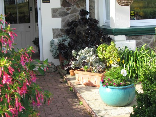Fairway House Guest House: Front Patio