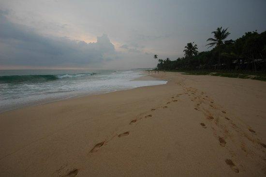 Club Koggala Village: пляж