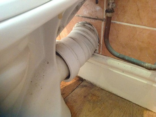Colwell Bay Holiday Cottages: bathroom could do with restoration