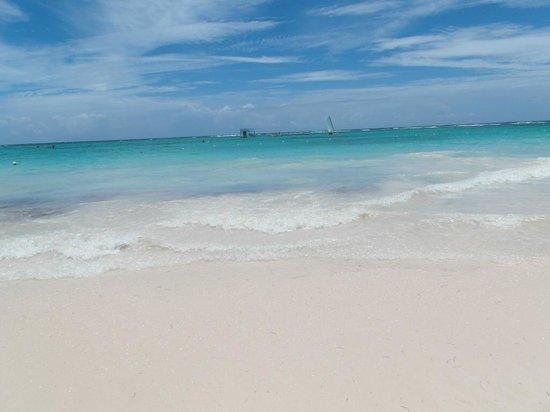 Ocean Blue & Sand: beach