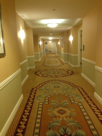 Signature at MGM Grand : Hallway