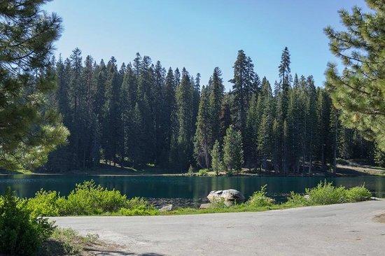 Montecito Sequoia Lodge: Beautiful lake on the property