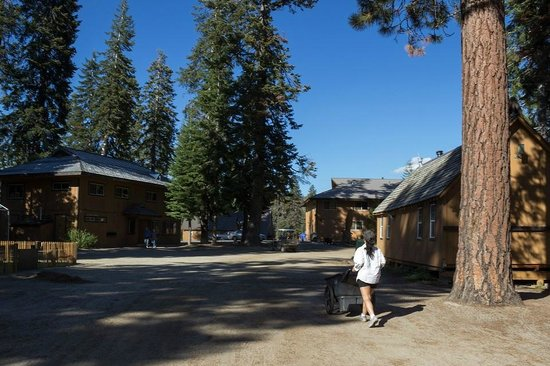 Montecito Sequoia Lodge: Lodge grounds and wheelbarrow bellhop (my wife :)