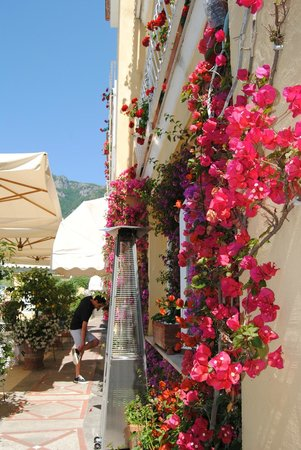 Hotel Marincanto: Beautiful flowers all around the hotel!