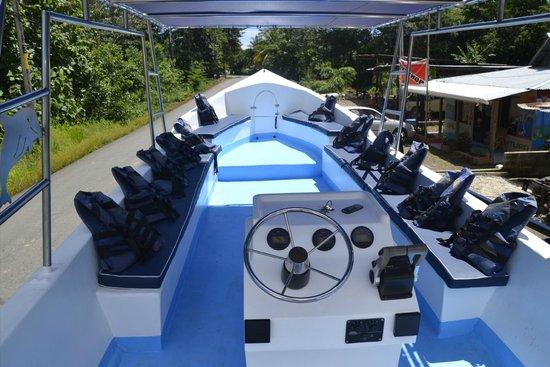 Whale adventure: Botes Ballena Aventura