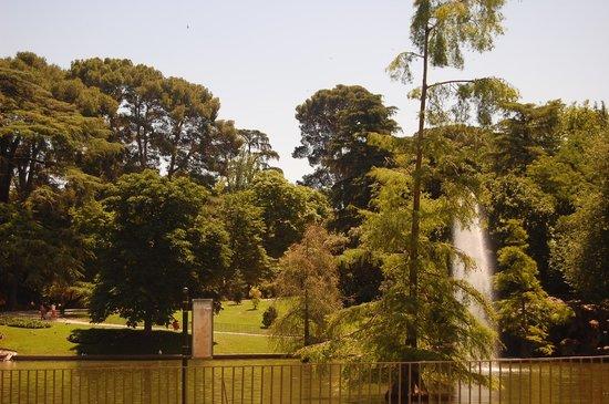 Retiro Park (Parque del Retiro): Muita área verde