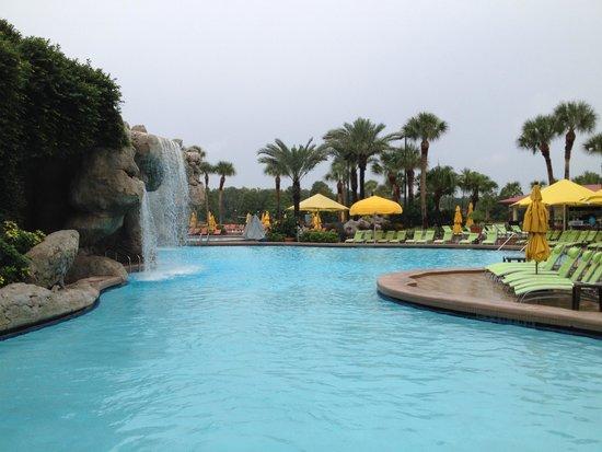 Hyatt Regency Grand Cypress : Pool Area