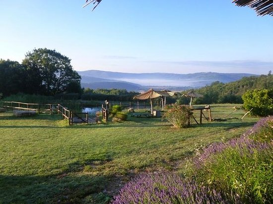 Agriturismo Bio Le Castellacce : i colori del mattino
