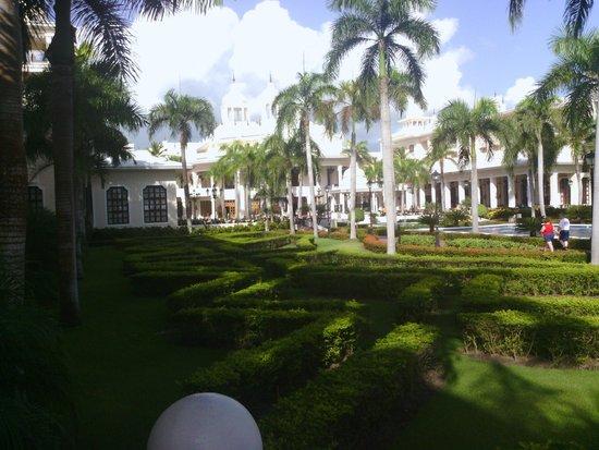 Hotel Riu Palace Punta Cana : Jardines del Hotel