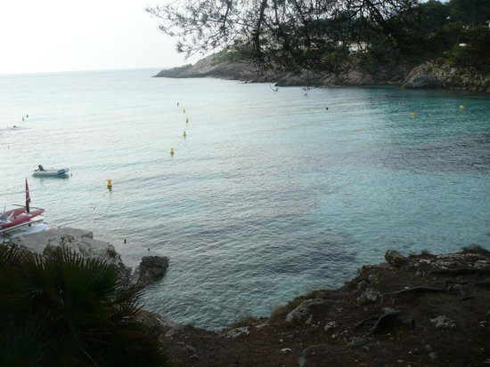 Beach Club Font de Sa Cala: plage