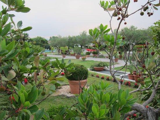 Hotel Villa Del Quar: Gardens