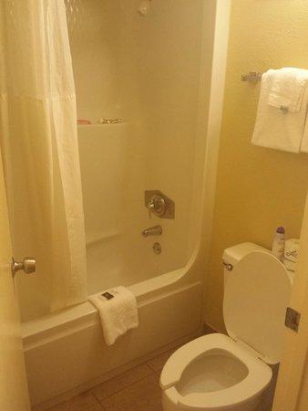 Rosen Inn at Pointe Orlando: shower