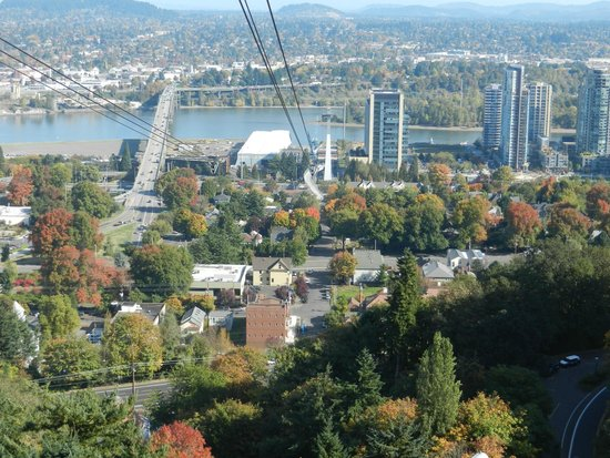 Portland Aerial Tram : Great Views from any Gondola Window