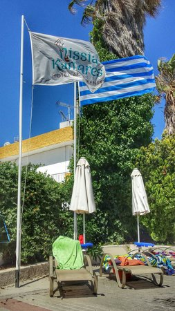 Nissia Kamares Hotel Apartments: by the pool