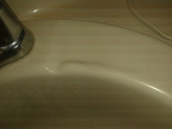 Econo Lodge: Pubic hair in the sink