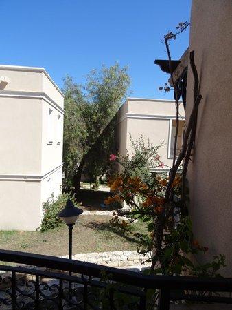 Cactus Mirage Family Club : Vue