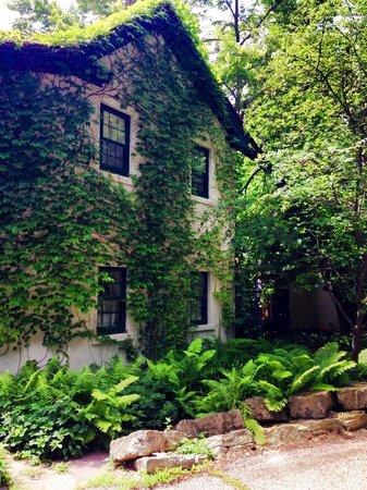 Arbor House, An Environmental Inn : The beautiful grounds of the inn