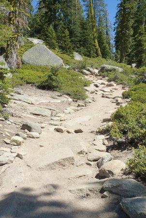 Taft Point Trail, Yosemite NP, California: Rocky Trail