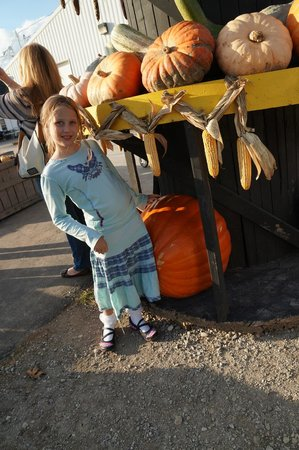 Tuttle Orchards: Giant pumpkin and gourd display