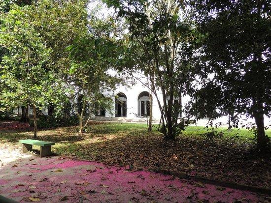 Tropical Manaus Ecoresort : Vista do zoo