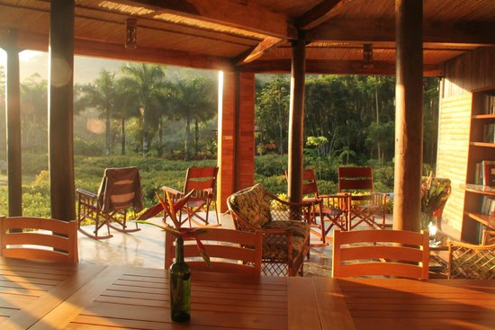 Macaw Lodge: Looking out into the gardens