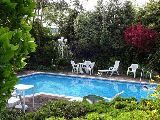 Hotel La Michele: Pool