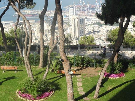 Dan Carmel Haifa: Vista da baia de Haifa