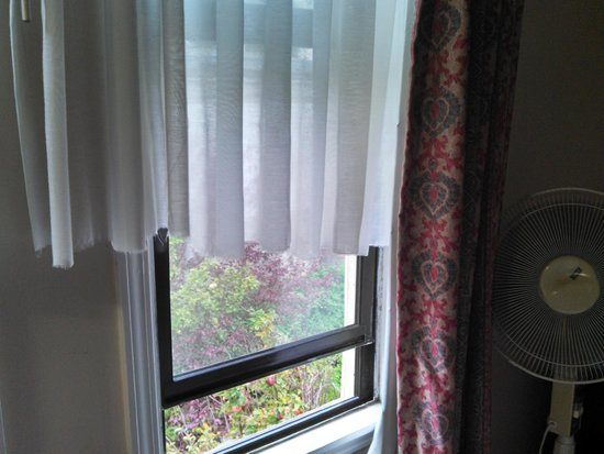 Alpha Inn & Suites: ripped off curtains