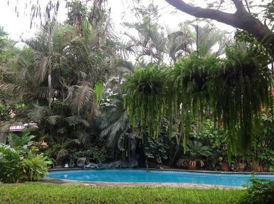 Posada Monterrico: the garden