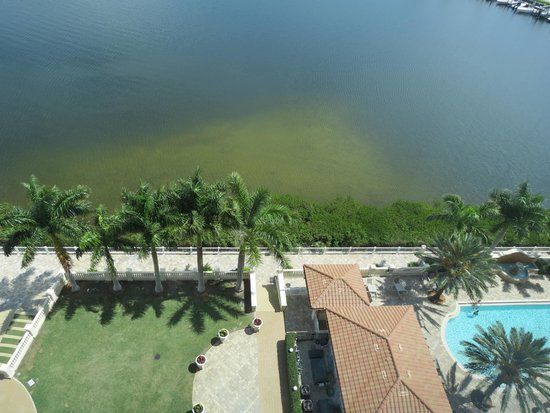 The Westin Cape Coral Resort At Marina Village: Water View Suite