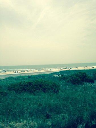 The Sea Gull: Beautiful views!