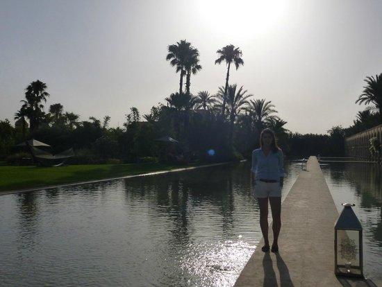 Palais Namaskar: Amazing Gardens