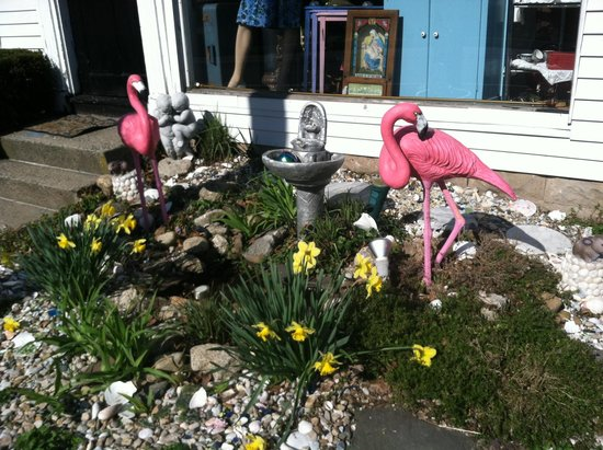 Plantsville, CT: Look For The Pink Flamingos !!!