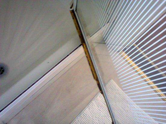 Ashlea House : mould at bottom of shower door