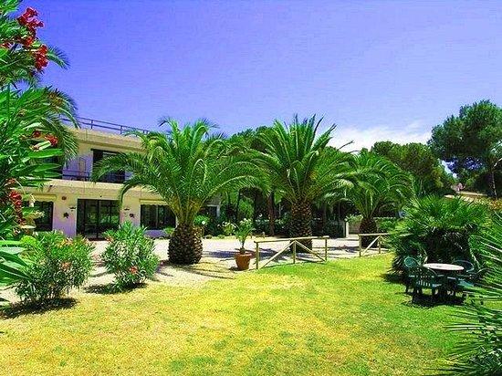 Mirage Hotel: Giardino