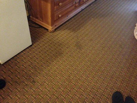 Days Inn And Suites Downtown Gatlinburg Parkway : Dirty carpet