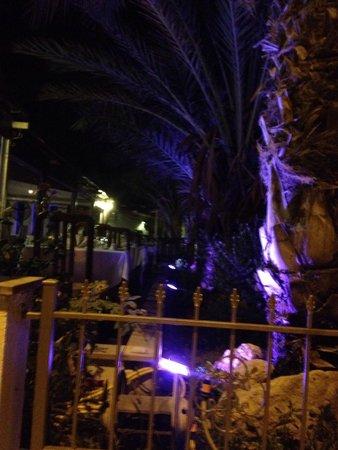 Ficardo Restaurant: Gardens!!