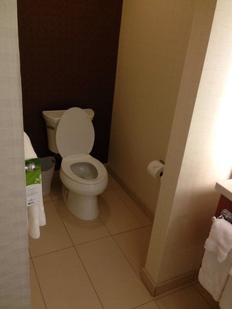 SpringHill Suites Jackson Ridgeland/The Township at Colony Park: Rm 427