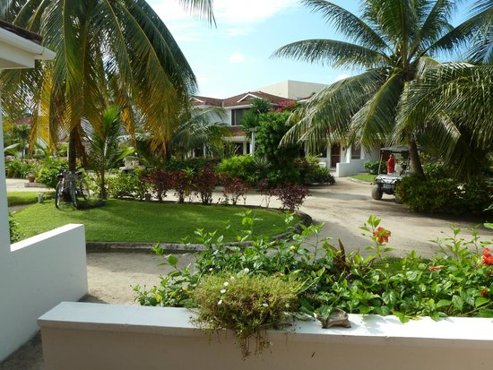 Paradise Villas : looking out from 316 toward the pool and the beach