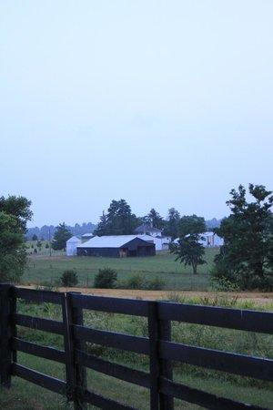 The Farm LLC : Farm